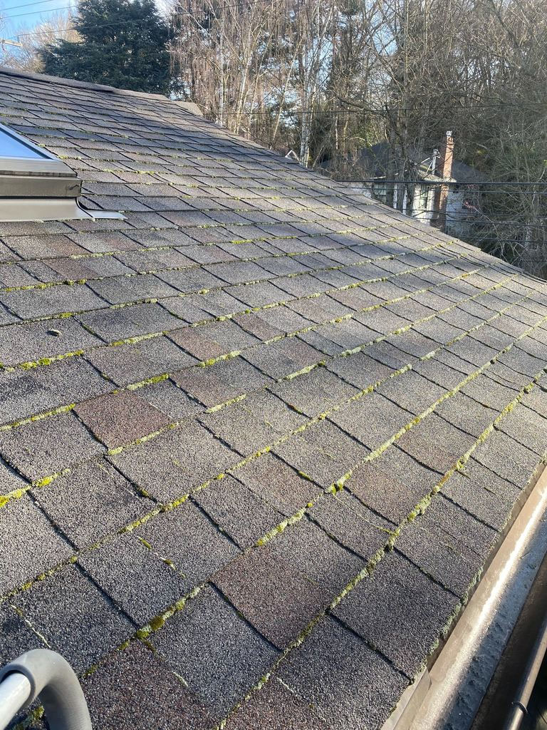 Best Redmond Wa Roof Moss Removal